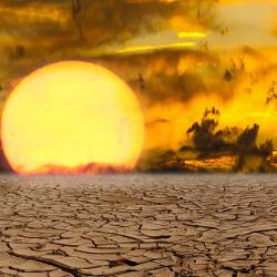 dry desert drought in a hot sunset