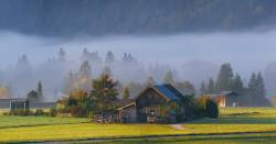 Farm fields and barns in a forest valley covered with a blanket of fog