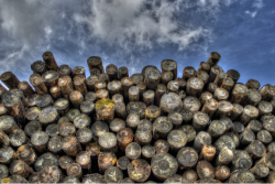 pile of logs with a cloudy sky in the background