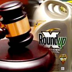 judges gavel beside a jug of Monsantos Roundup herbicide