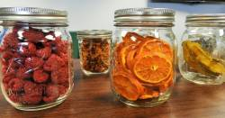 dehydrated fruit and vegetables in glass mason jars on a countertop
