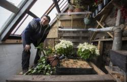 Experimental Sunken Greenhouse in Minneapolis is Weathering its First Winter – and Growing Food