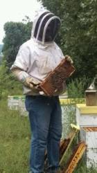 Faces and Places: Bee Farming in the Ozarks