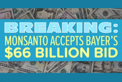 Monsanto accepts Bayer's bid