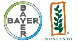 Monsanto and Bayer logos