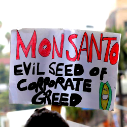"""""""Monsanto: Evil Seed of Corporate Greed"""" protest sign"""