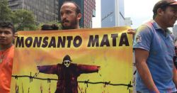 protest in Mexico City against Monsanto