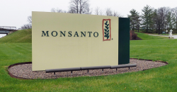 concrete monsanto sign