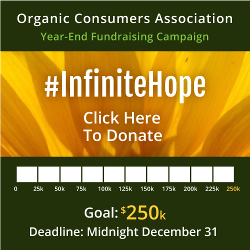 Year end fundraising meter