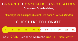 summer 2017 fundraising meter at $125k