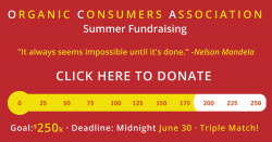 summer 2017 fundraising meter at $180k