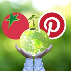 Organic Consumers Association curating a Pinterest page on What Matters Most