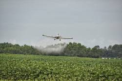 Airplane pesticide spray on field crops