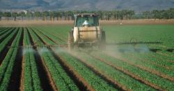 farmer in a tractor applying a spray herbicide or pesticide to a row of agricultural crops