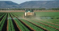 Farmer on tractor spraying fields with pesticides