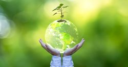 two hands holding a planet Earth sphere that has a small green tree seedling growing out of it