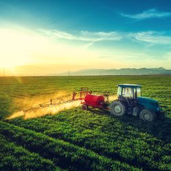 red and blue tractor spraying herbicides on a farm crop field at sunrise