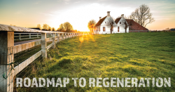 roadmap to regeneration