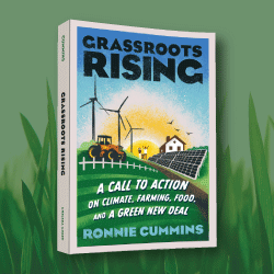 Grassroots Rising book cover image