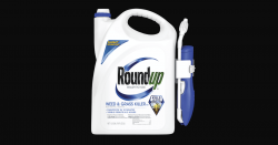 sprayer bottle of Monsantos glyphosate herbicide roundup