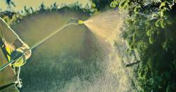 Person spraying pesticides.