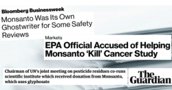 Monsanto headlines.