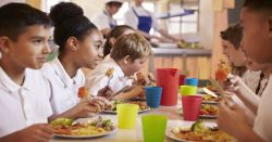 students eating healthy lunches in a school cafeteria