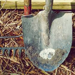 Shovel and rake gardening tools leaning in dirt