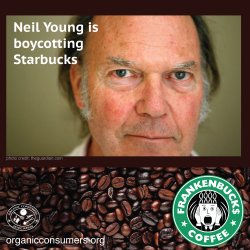 Neil Young Calls for Starbucks Boycott