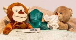 sick stuffed animal toys with tissues a hot water bottle and a thermometer