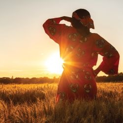farmer standing in a crop field at sunset