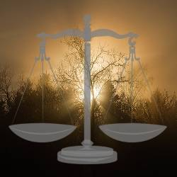 Set of judicial scales in front of a sunset by a forest