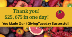 Giving Tuesday thank you