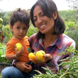 farmer and her son holding yellow tomatoes in a farm field