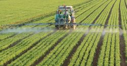 large tractor spraying crops in a farm field