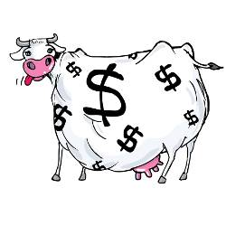 cow with dollar sign spots and its tongue sticking out