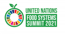 United Nations Food Systems Summit 2021 logo.