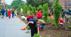 people planting gardens along the Beltline in Georgia with Trees Atlanta