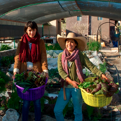 Two women holding vegetables at the Via Organica Farm