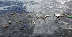 garbage and trash floating in polluted water