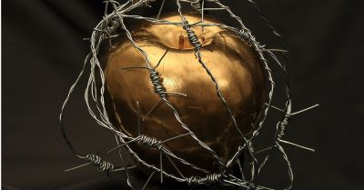 forbidden fruit golden apple wrapped in sharp barbed wire