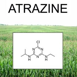 Model of atrazine chemical pesticide