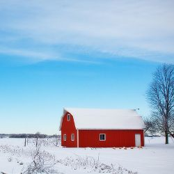 red barn in a farm field during winter covered in snow
