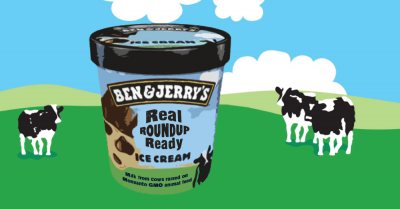 Roundup Ready ice cream from Ben and Jerrys