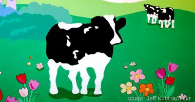 mural painting of Ben and Jerrys cows