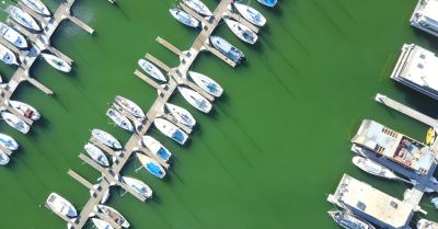 boats docked at a marina with green algae filled water