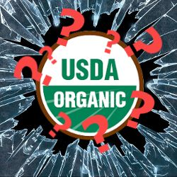 USDA organic seal among shattered glass and red question marks