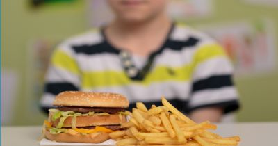 young boy in front of a plate of french fries and a hamburger