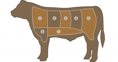 butchers chart on how to properly slice up beef cuts