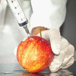 Syringe into an apple